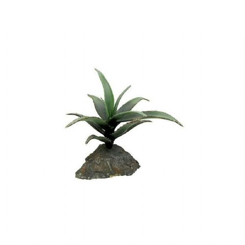LR Agave medium approx 15cm IF-85 PLB014